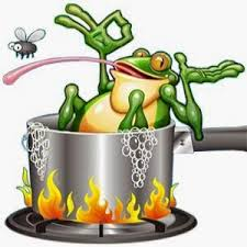 Dentist Lake Elmo MN - Frog in Hot Water